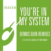 You're In My System (Dennis Quin Club Mix Feat. Troy Denari)